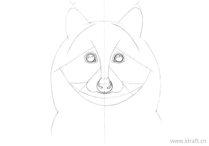 浣熊脸部线条画法