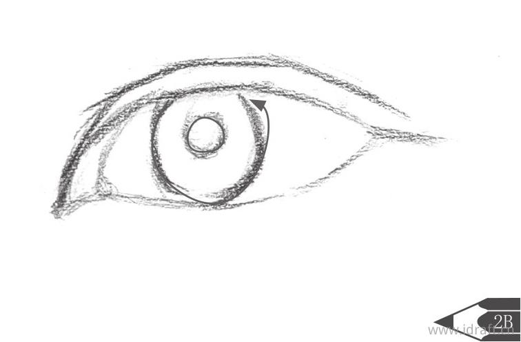 眼球与瞳孔的位置