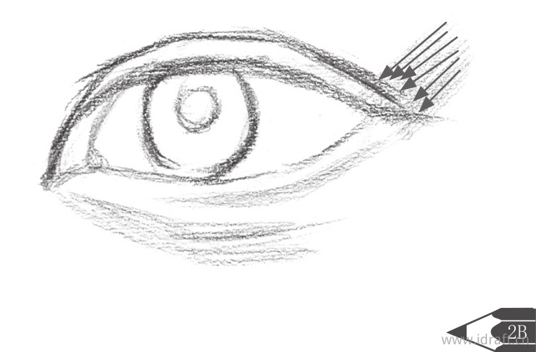 外眼角的暗部排线